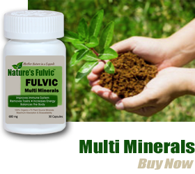 buy fulvic acid minerals online